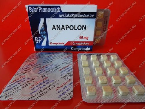 real Anapolon